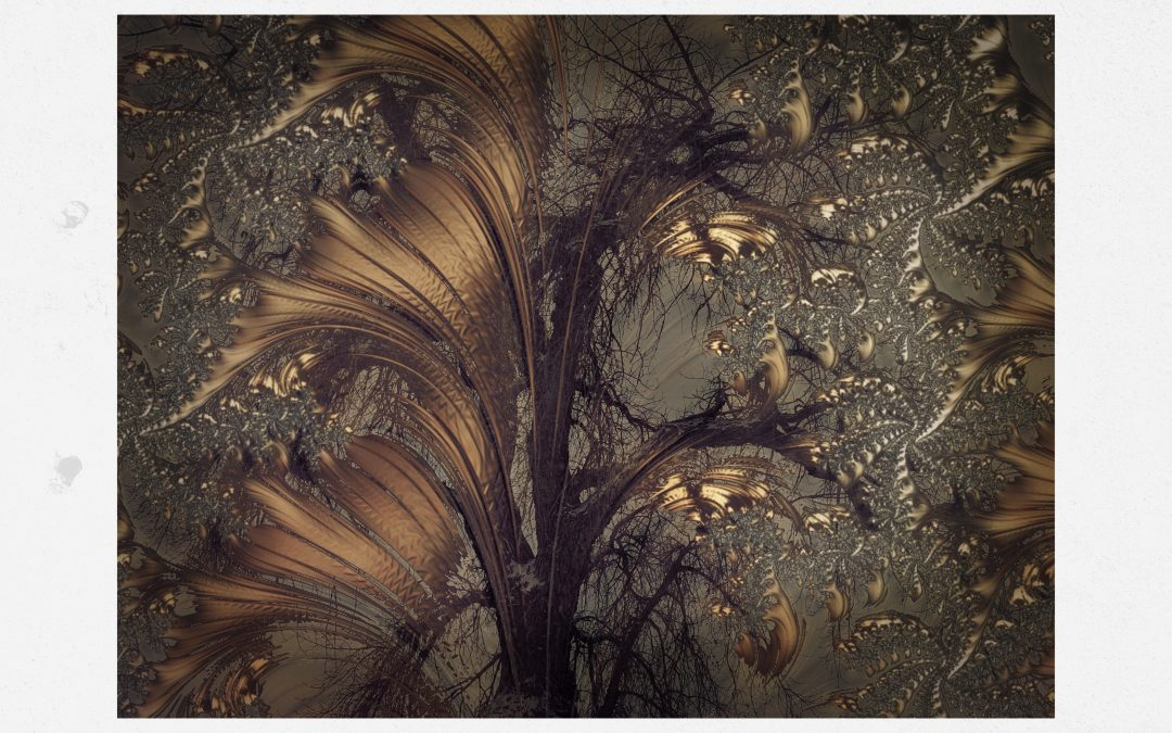 Kate Zari Roberts ~ Tree|Fractal