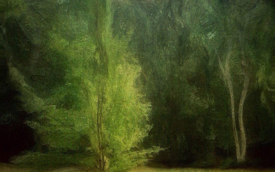 Barbara duBois ~ Gallery 2