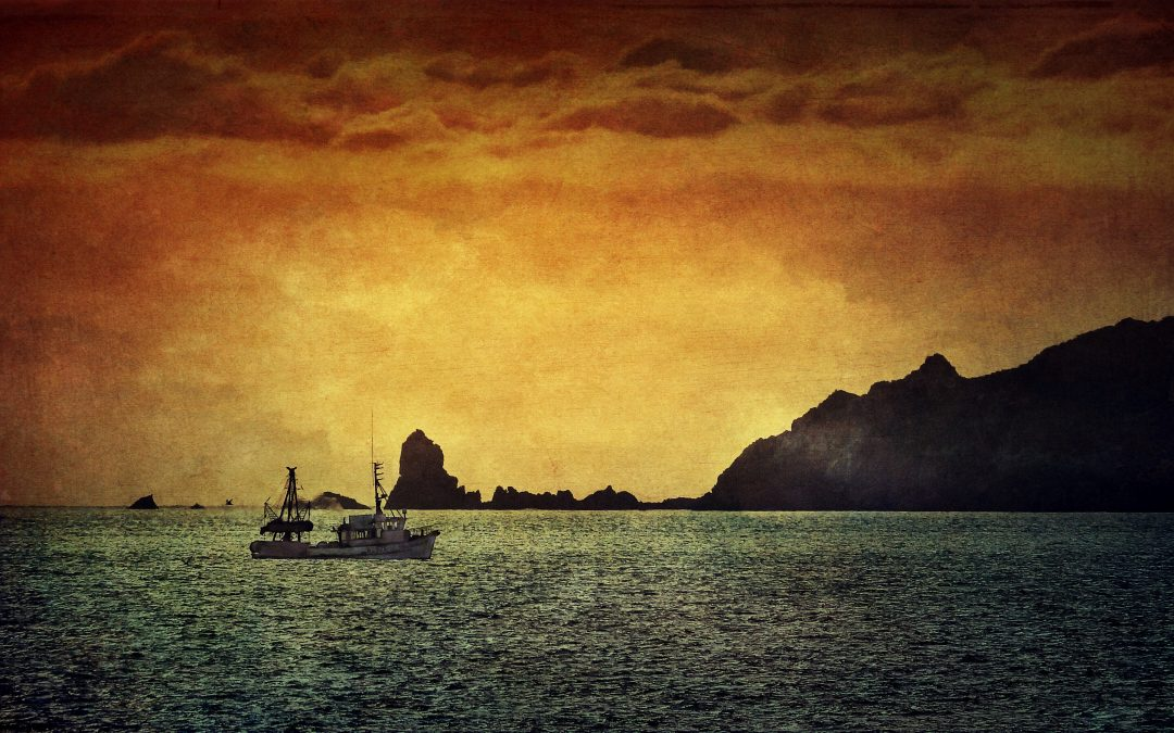 Leon Williams ~ Late evening Trawler, south end of Kapiti Island.