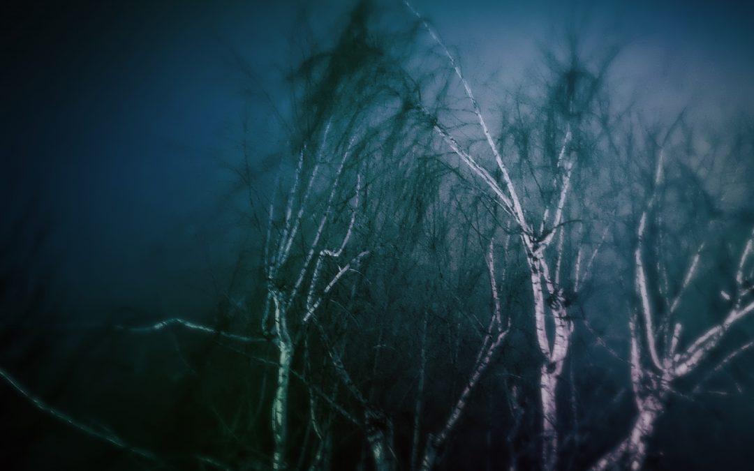 Meri Walker ~ Night Prowling, 1.