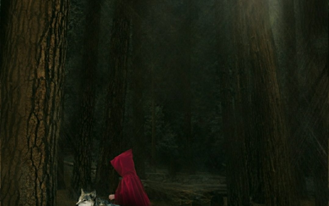Angie Jansen ~ in an alternate universe … red riding hood and the wolf were besties