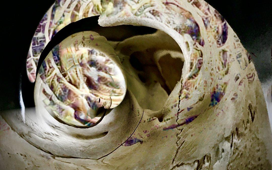 T. Wendell Peek ~ Composition In Bone & Digital Effervescence