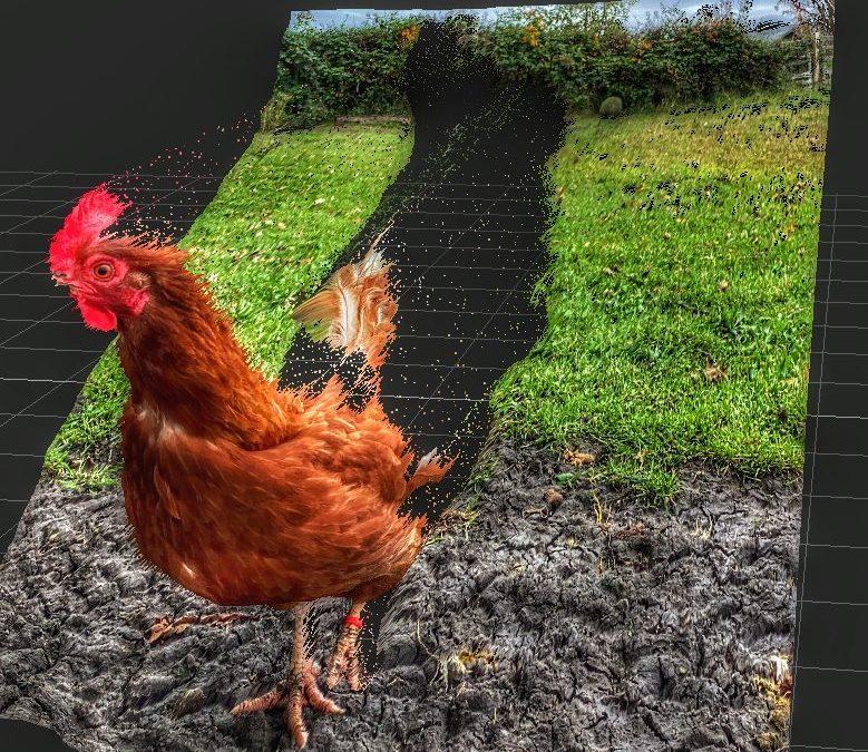 David Scott Leibowitz ~ Tearing Up the Farm
