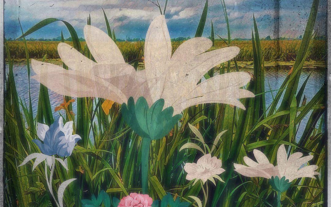 Jan Uiterwijk ~ Summer in the polder