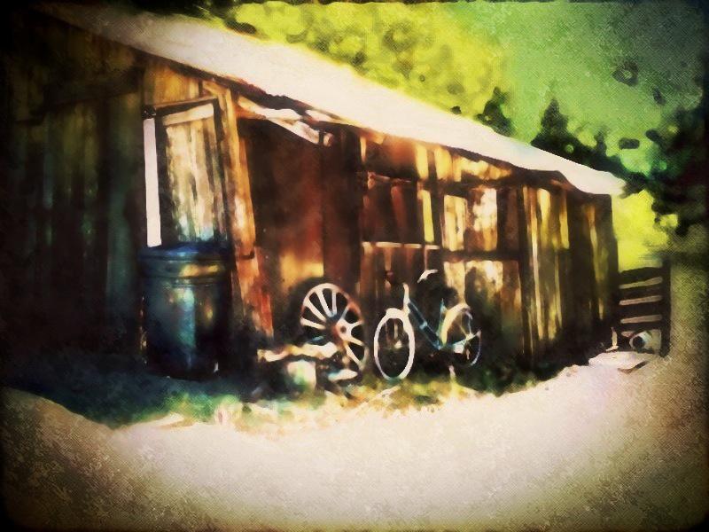 Maia Panos ~ Old Shed Next Door
