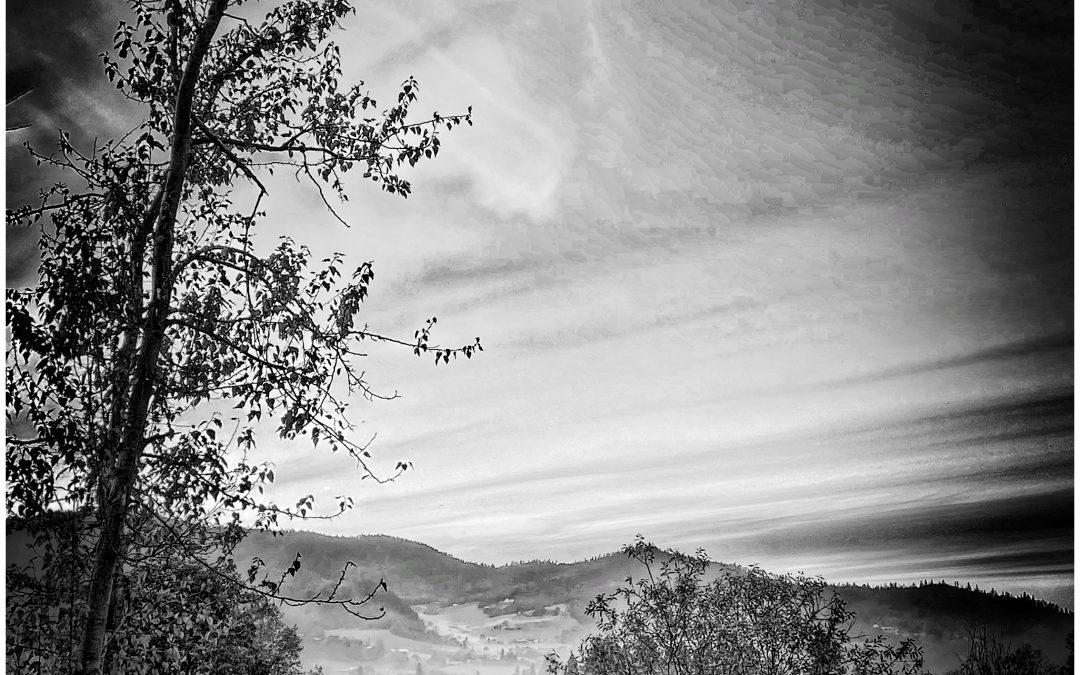 David Scott Leibowitz ~ Last Light, Country Road.