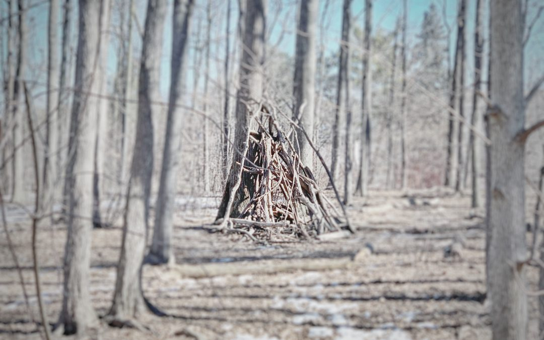 Aldo Pacheco ~ The Blair Witch Project Kindergarten Project