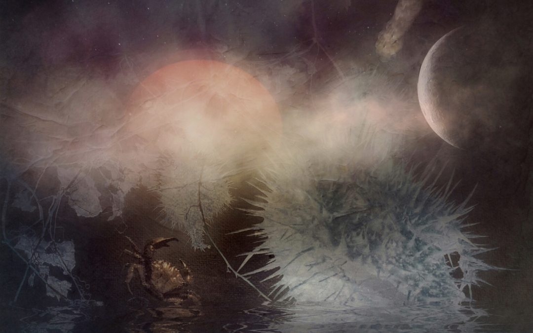 Barbara duBois ~ The Intuitive Dreamer